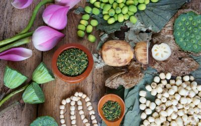 Perfect Health with Ayurveda: the Science of Life