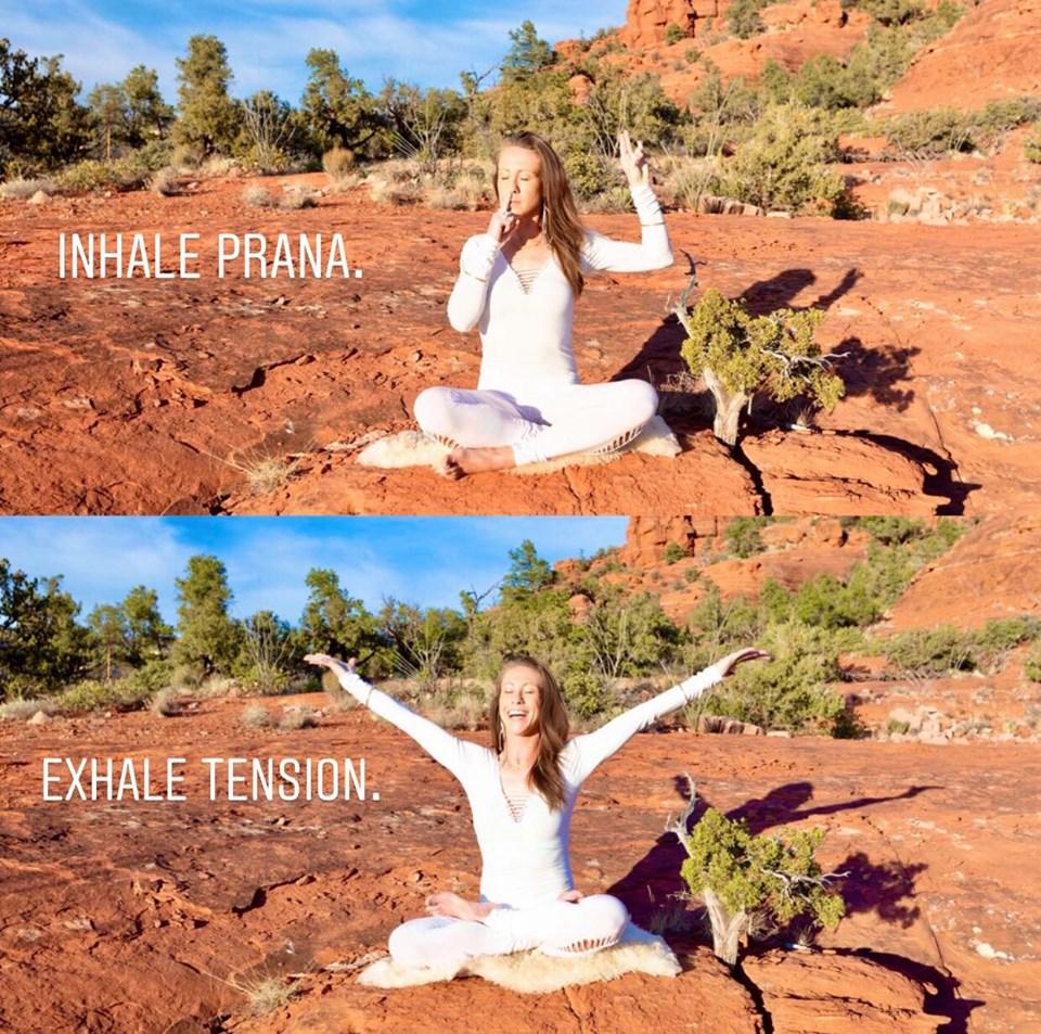 Pranayama: Yogic Breathing Exercises & Meditations